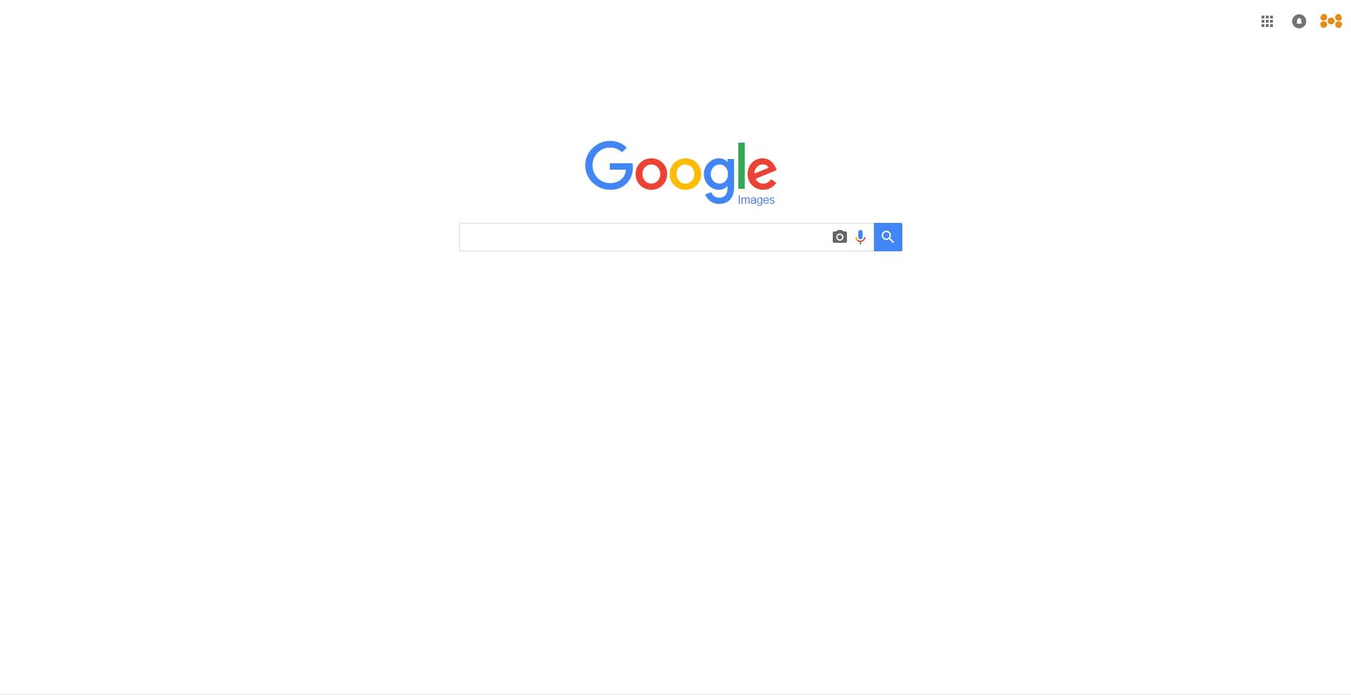 Google image search screen