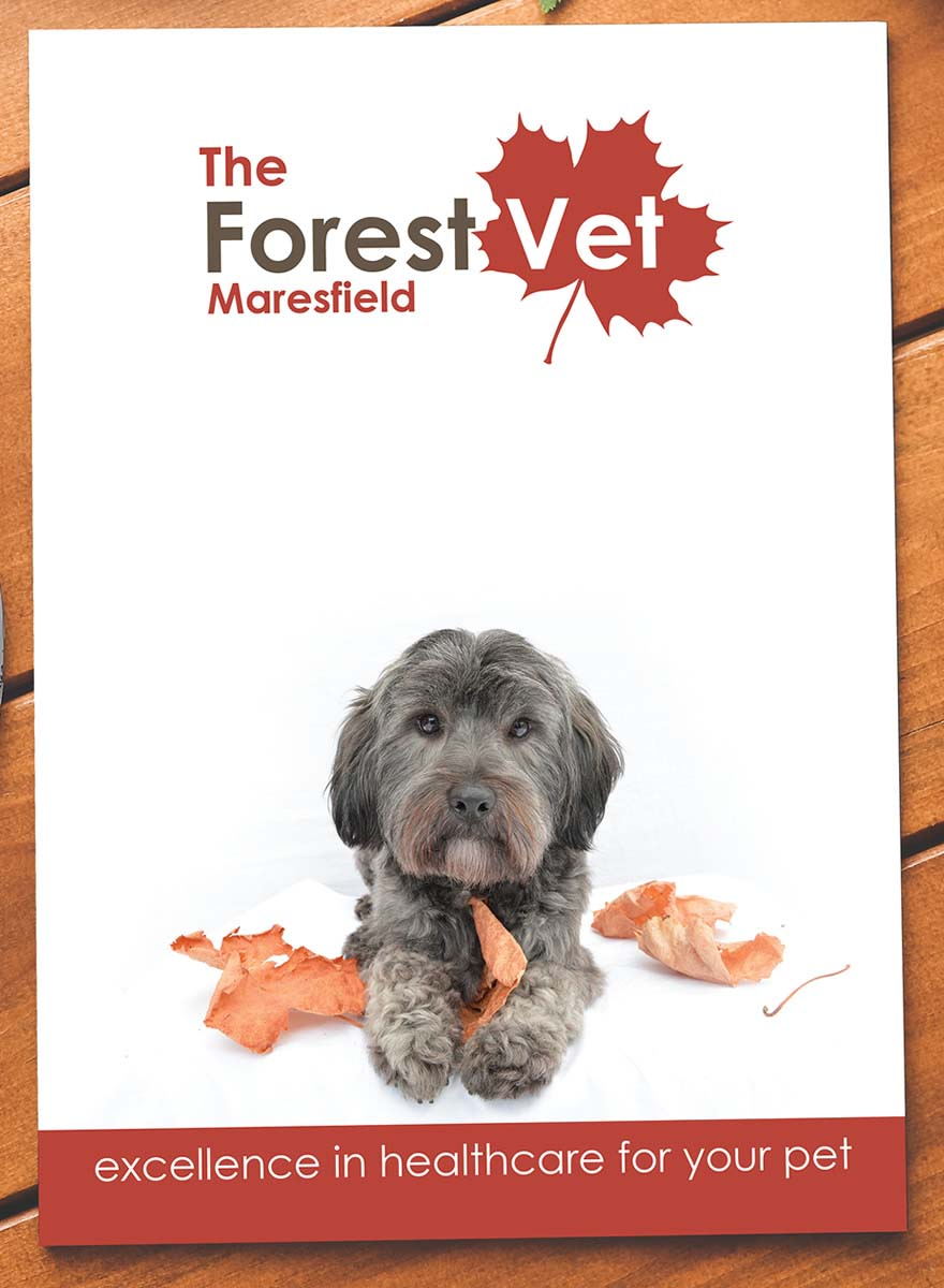 The Forest Vet Brochure