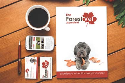Project Image for The Forest Vet - Branding